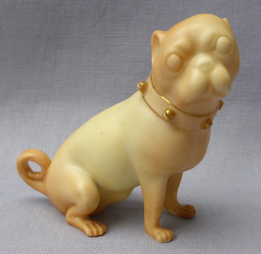 Royal Worcester blush ivory pug dog 1897